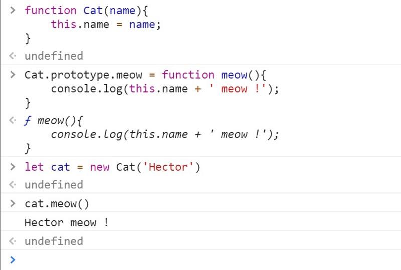 cat-class.jpeg